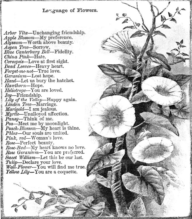 Valentines day edition the language of flowers how to write a more on writing victorian love letters thecheapjerseys Image collections